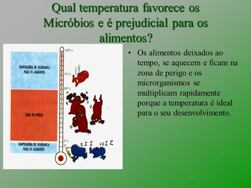 Qual temperatura favorece os Micróbios e é prejudicial para os alimentos