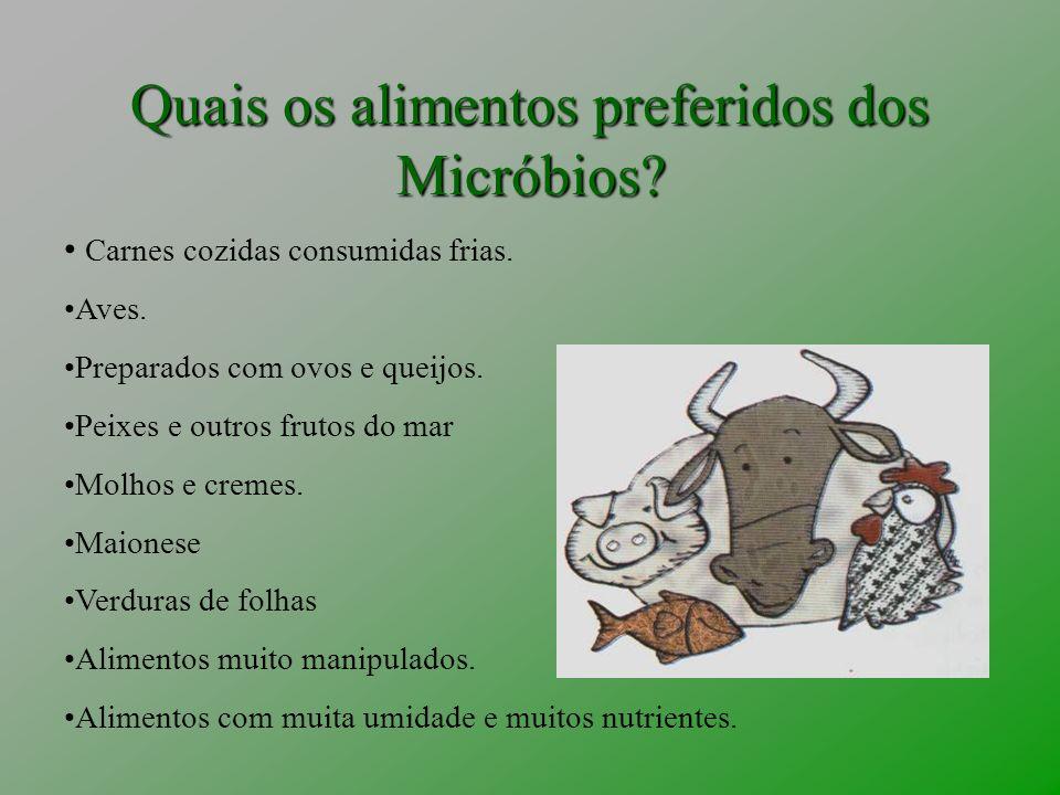 Quais os alimentos preferidos dos Micróbios
