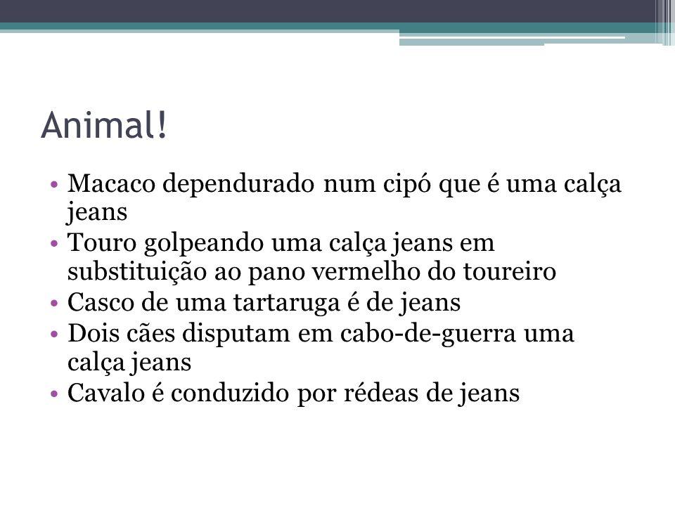 Animal! Macaco dependurado num cipó que é uma calça jeans