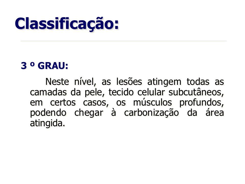 Classificação: 3 º GRAU: