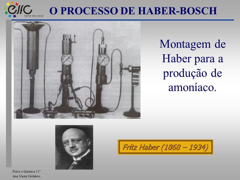 O PROCESSO DE HABER-BOSCH