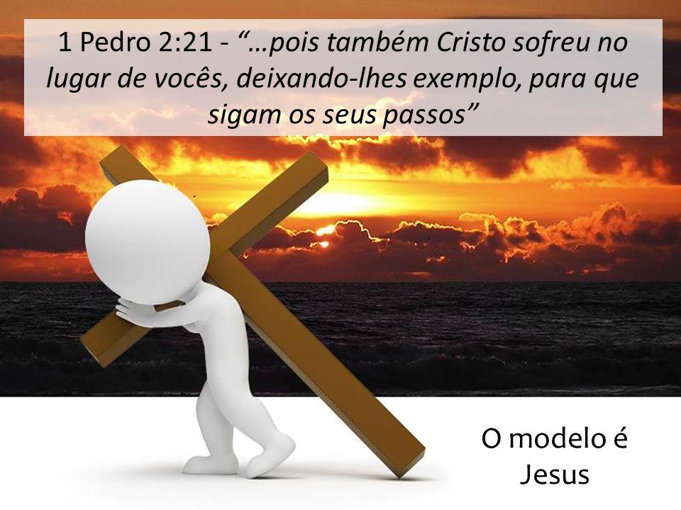 1 Pedro 2:21 - …pois também Cristo sofreu no lugar de vocês, deixando-lhes exemplo, para que sigam os seus passos