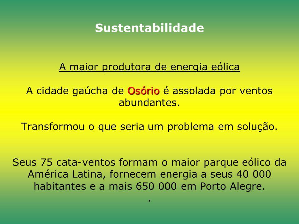 Sustentabilidade A maior produtora de energia eólica A cidade gaúcha de Osório é assolada por ventos abundantes.