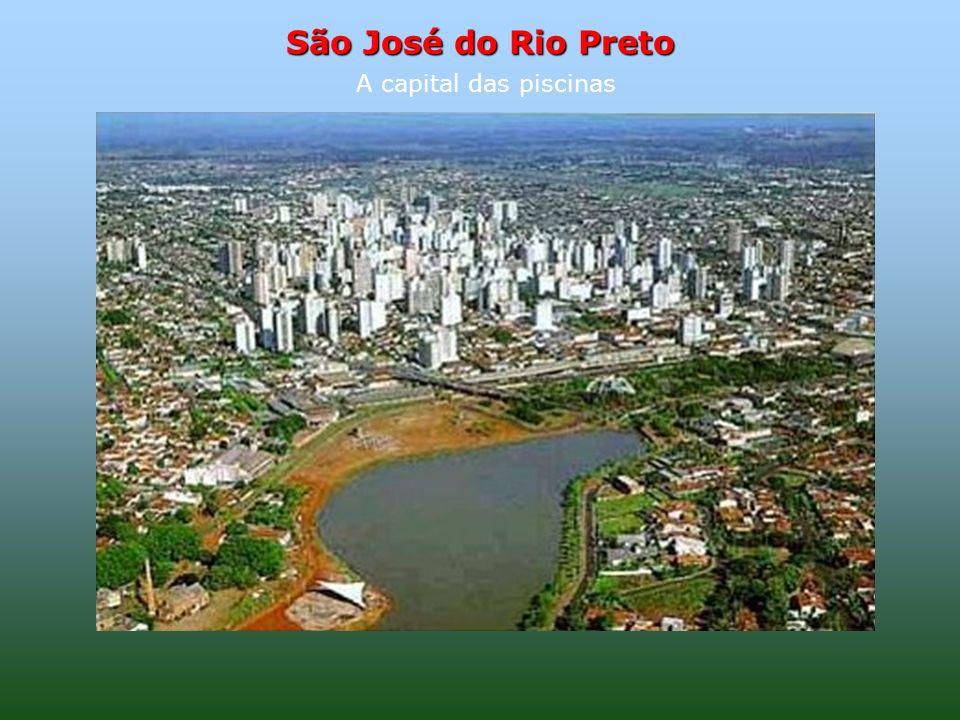 São José do Rio Preto A capital das piscinas