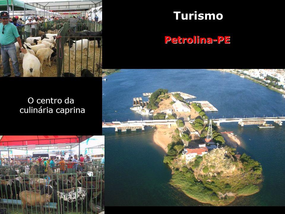 Turismo Petrolina-PE O centro da culinária caprina