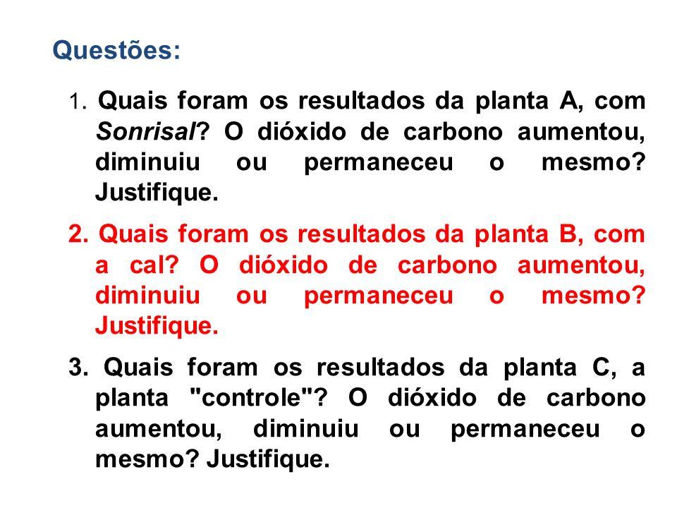 Questões: 1. Quais foram os resultados da planta A, com Sonrisal O dióxido de carbono aumentou, diminuiu ou permaneceu o mesmo Justifique.