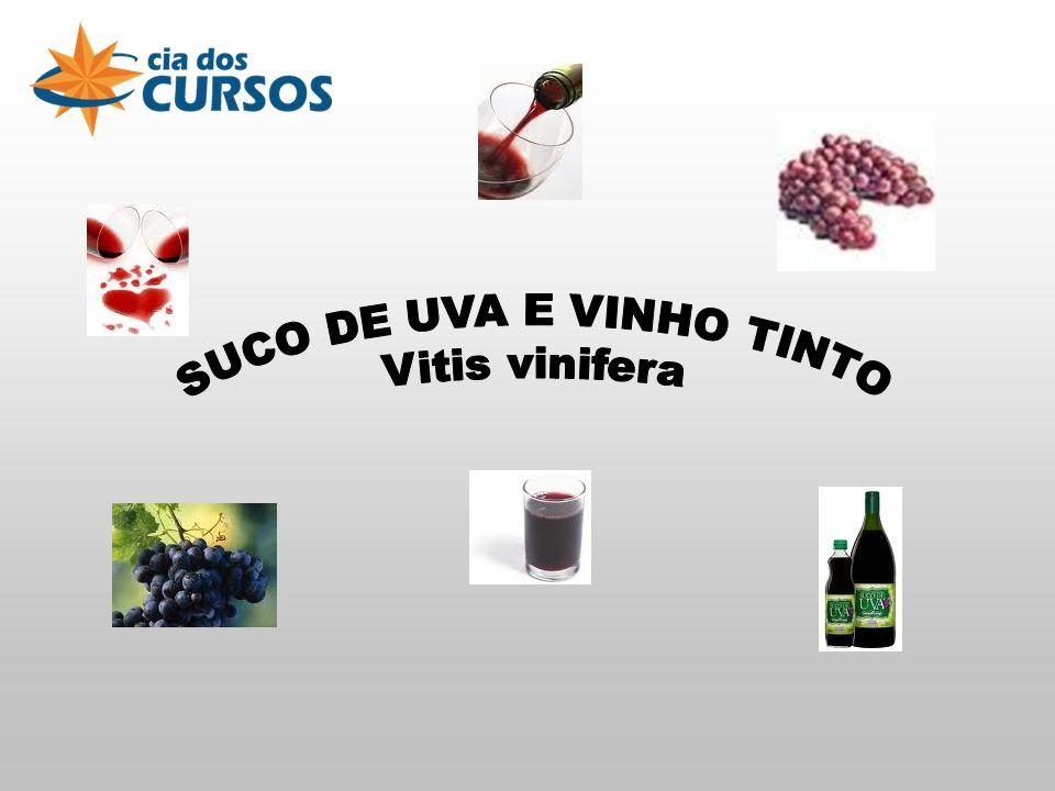 SUCO DE UVA E VINHO TINTO