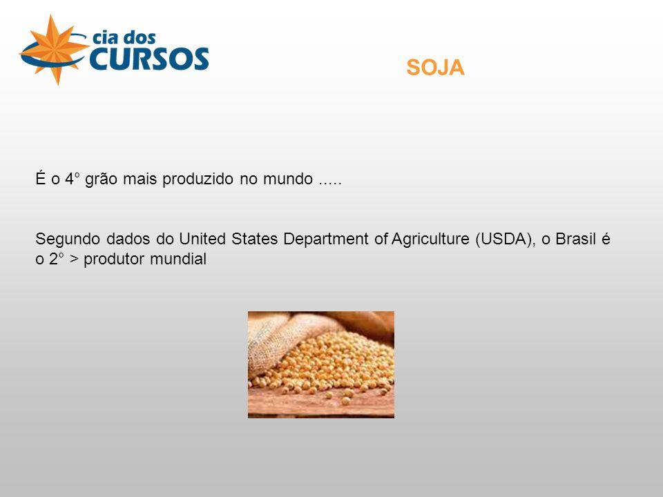 SOJA É o 4° grão mais produzido no mundo .....