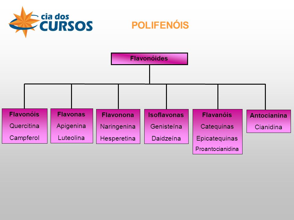 POLIFENÓIS Flavonóides Flavonóis Quercitina Campferol Flavonas