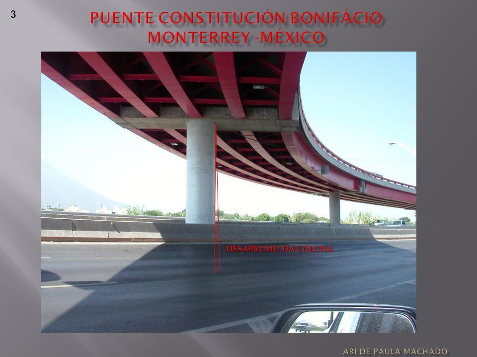 Puente constitución bonifácio
