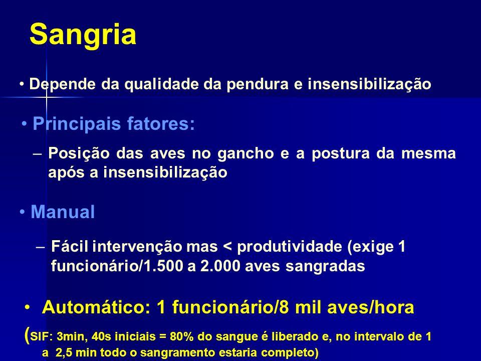 Sangria Principais fatores: Manual