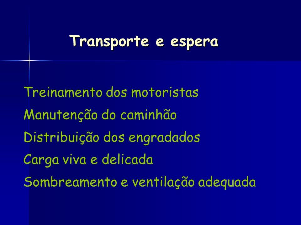 Transporte e espera Treinamento dos motoristas Manutenção do caminhão