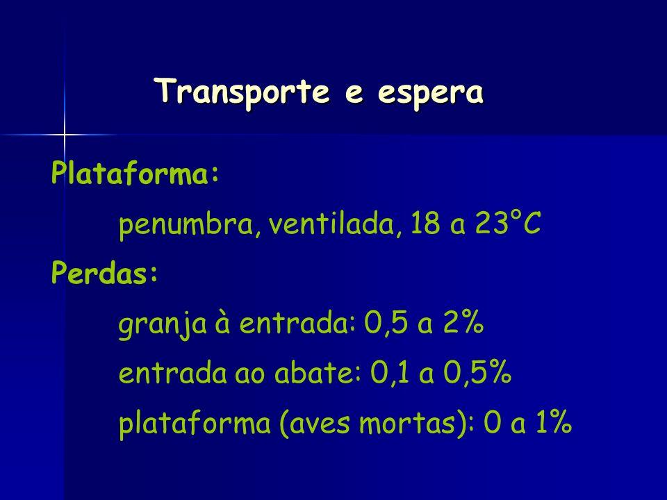 Transporte e espera Plataforma: penumbra, ventilada, 18 a 23°C Perdas: