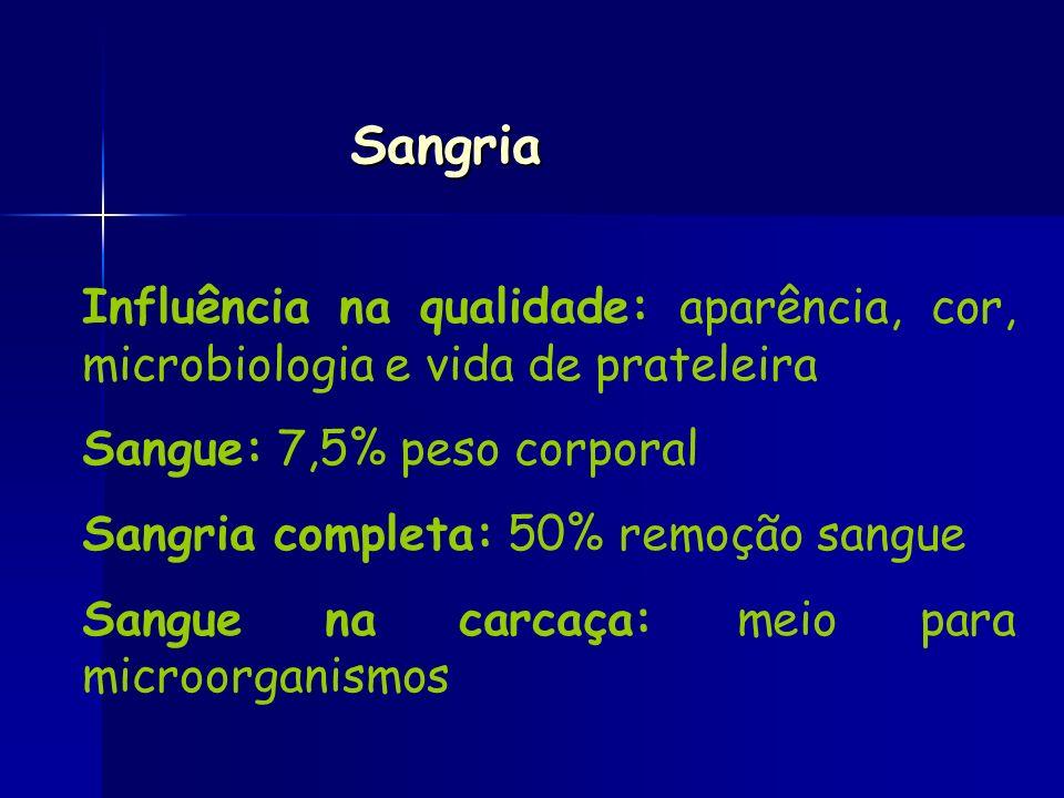Sangria Influência na qualidade: aparência, cor, microbiologia e vida de prateleira. Sangue: 7,5% peso corporal.