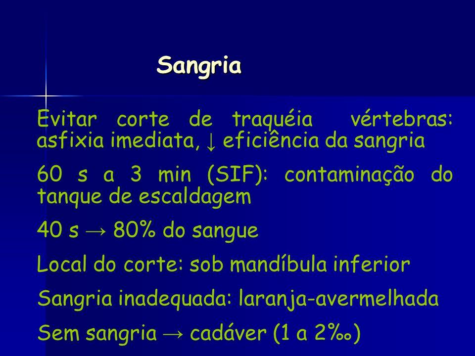 Sangria Evitar corte de traquéia vértebras: asfixia imediata, ↓ eficiência da sangria. 60 s a 3 min (SIF): contaminação do tanque de escaldagem.
