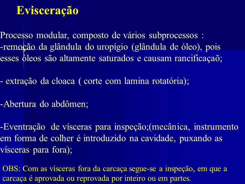 Evisceração Processo modular, composto de vários subprocessos :