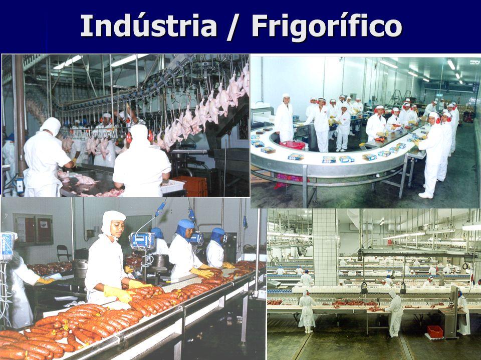 Indústria / Frigorífico