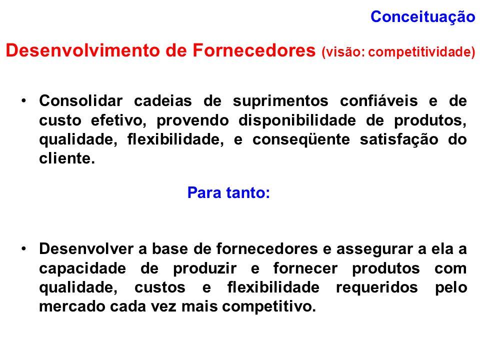 Desenvolvimento de Fornecedores (visão: competitividade)