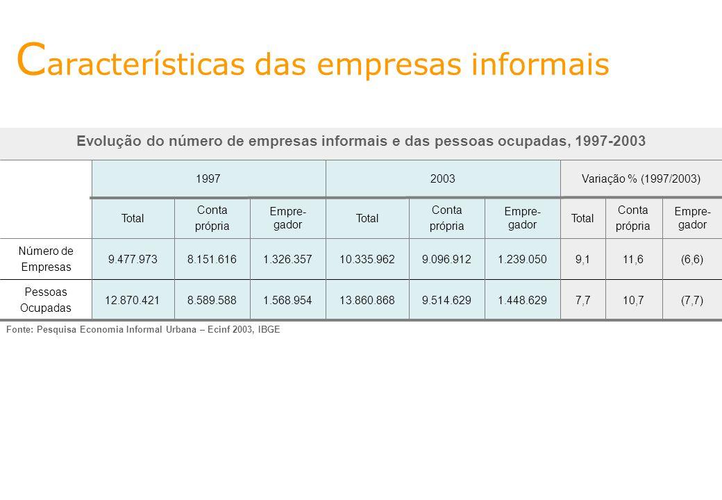 Características das empresas informais