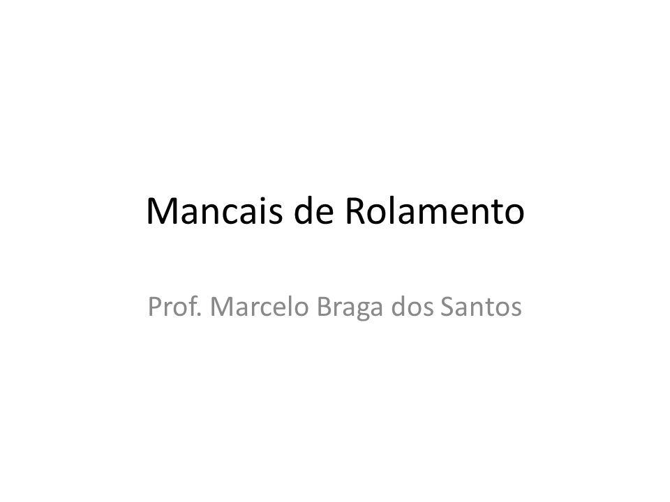 Prof. Marcelo Braga dos Santos