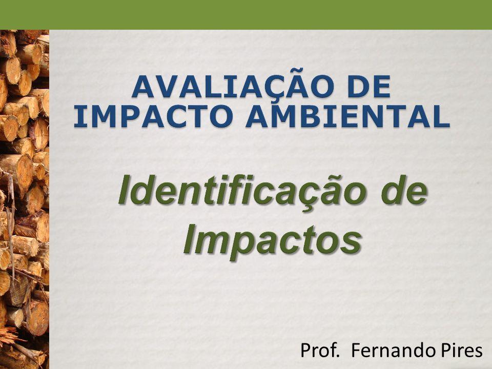 AVALIAÇÃO DE IMPACTO AMBIENTAL Identificação de Impactos