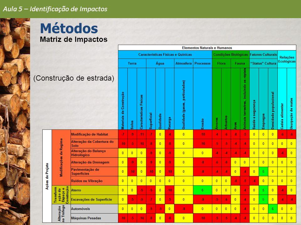 Matriz de Impactos (Construção de estrada)