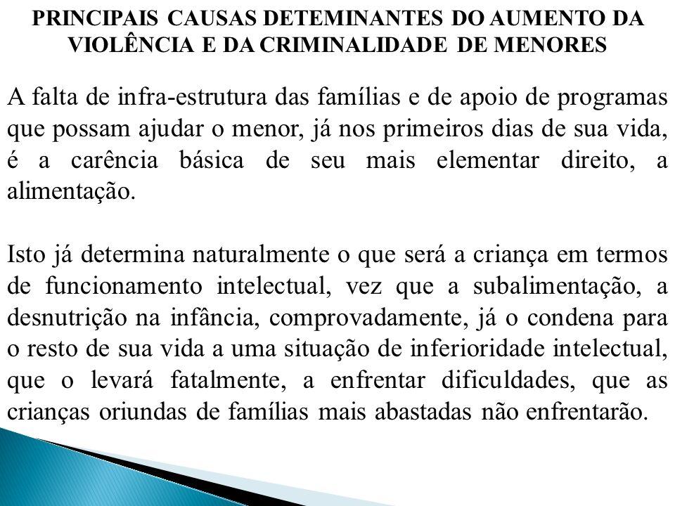 PRINCIPAIS CAUSAS DETEMINANTES DO AUMENTO DA VIOLÊNCIA E DA CRIMINALIDADE DE MENORES