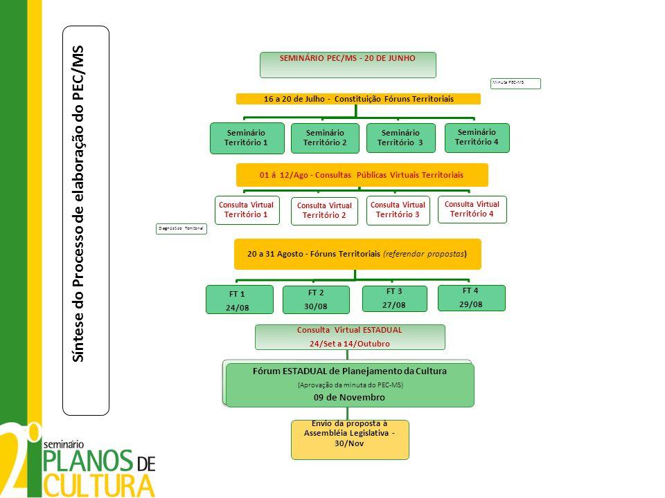 Síntese do Processo de elaboração do PEC/MS