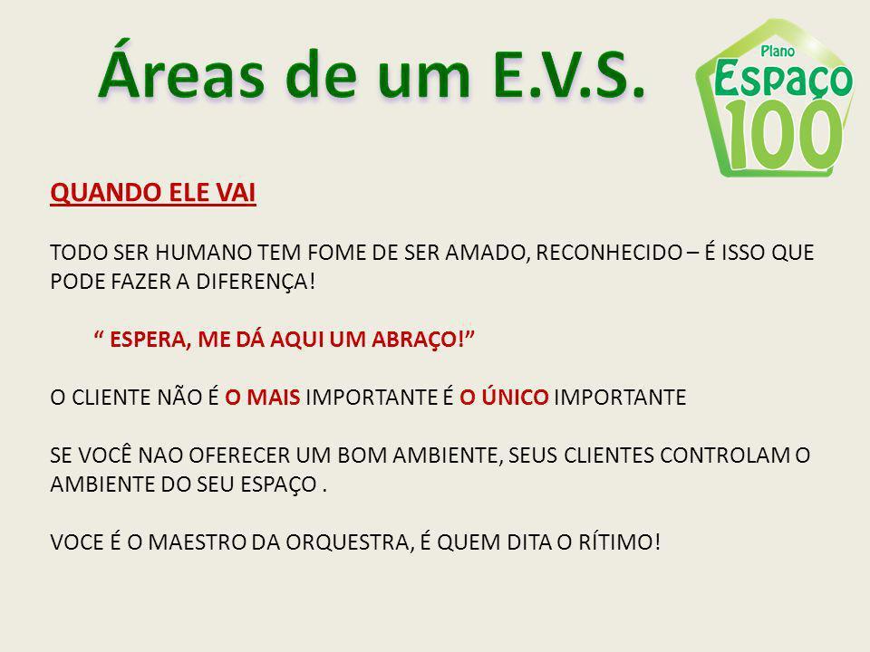 Áreas de um E.V.S. QUANDO ELE VAI
