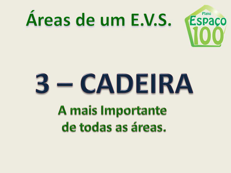 Áreas de um E.V.S. 3 – CADEIRA A mais Importante de todas as áreas.