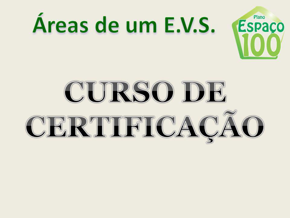 Áreas de um E.V.S. CURSO DE CERTIFICAÇÃO