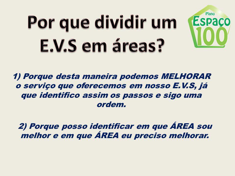 Por que dividir um E.V.S em áreas