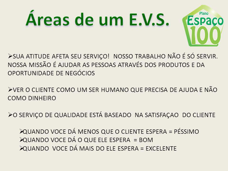 Áreas de um E.V.S.