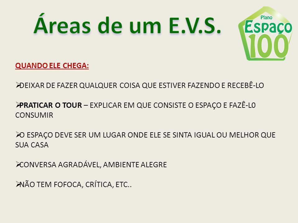 Áreas de um E.V.S. QUANDO ELE CHEGA: