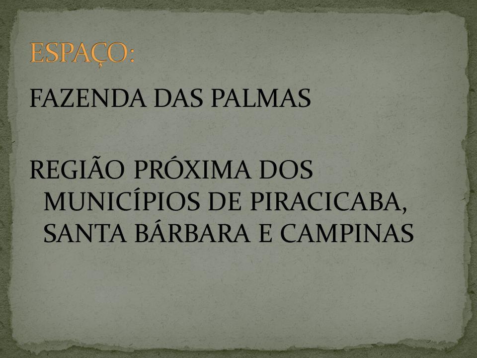 ESPAÇO: FAZENDA DAS PALMAS REGIÃO PRÓXIMA DOS MUNICÍPIOS DE PIRACICABA, SANTA BÁRBARA E CAMPINAS