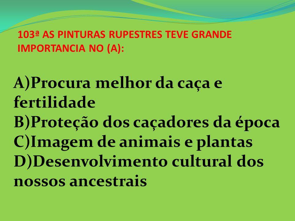 103ª AS PINTURAS RUPESTRES TEVE GRANDE IMPORTANCIA NO (A):