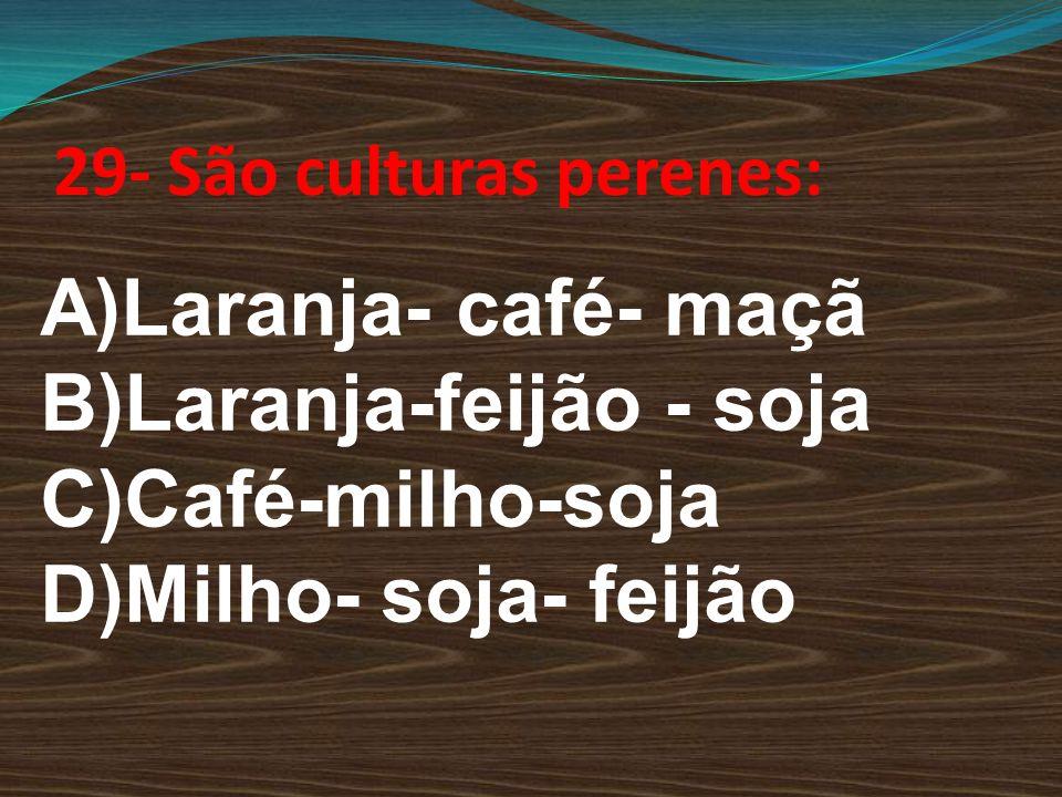 29- São culturas perenes: