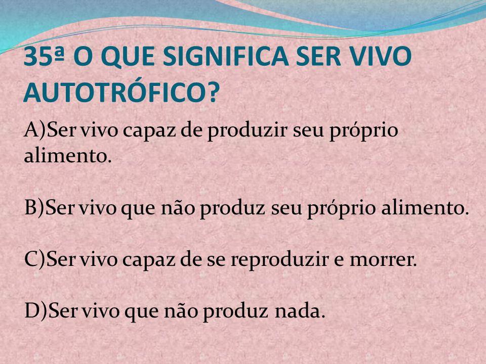 35ª O QUE SIGNIFICA SER VIVO AUTOTRÓFICO
