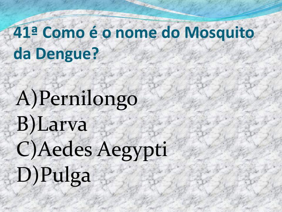 41ª Como é o nome do Mosquito da Dengue