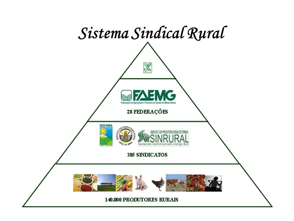 Sistema Sindical Rural