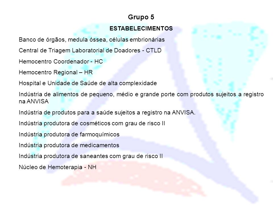 Grupo 5 ESTABELECIMENTOS