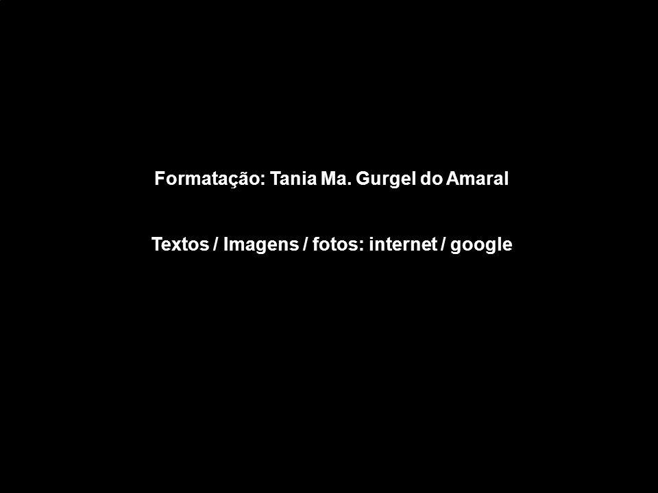 Formatação: Tania Ma. Gurgel do Amaral