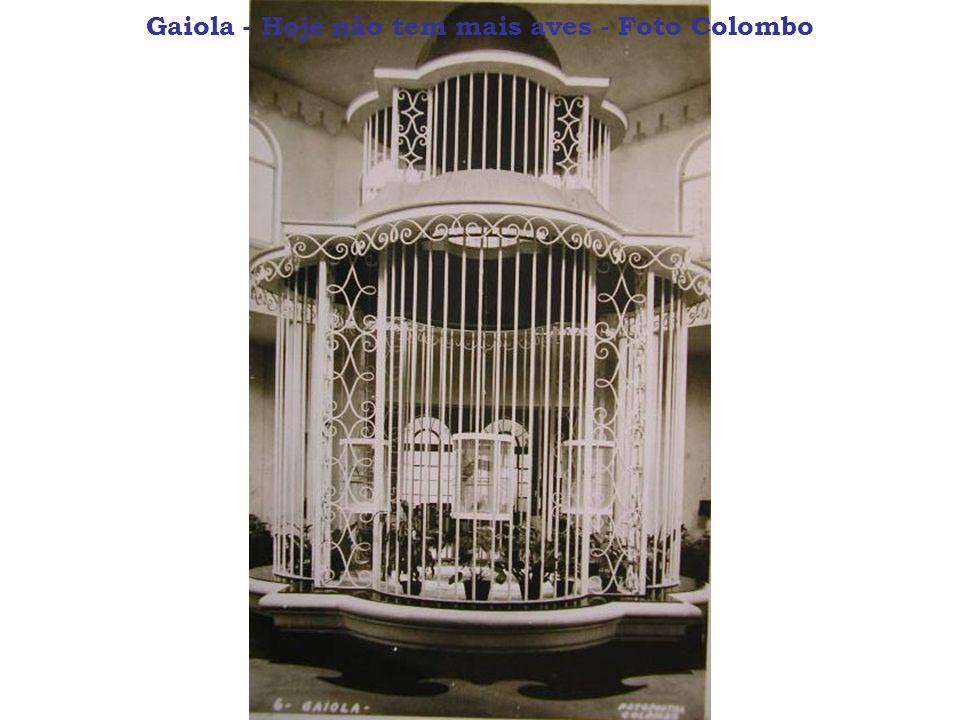 Gaiola - Hoje não tem mais aves - Foto Colombo