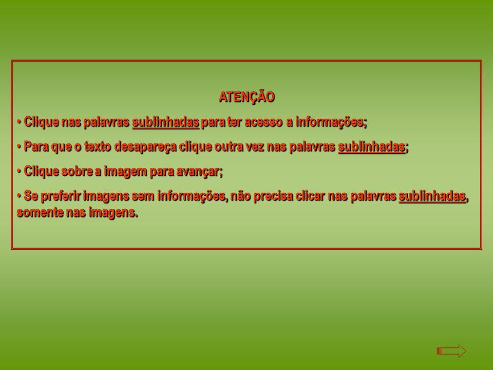 ATENÇÃO Clique nas palavras sublinhadas para ter acesso a informações; Para que o texto desapareça clique outra vez nas palavras sublinhadas;