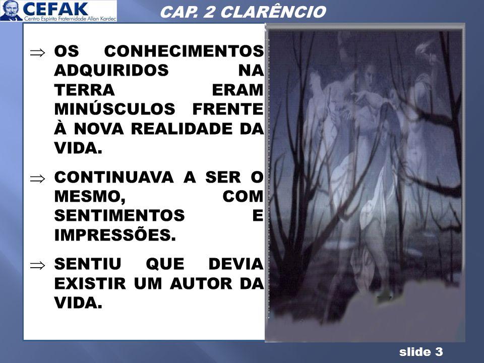 CAP. 2 CLARÊNCIO OS CONHECIMENTOS ADQUIRIDOS NA TERRA ERAM MINÚSCULOS FRENTE À NOVA REALIDADE DA VIDA.