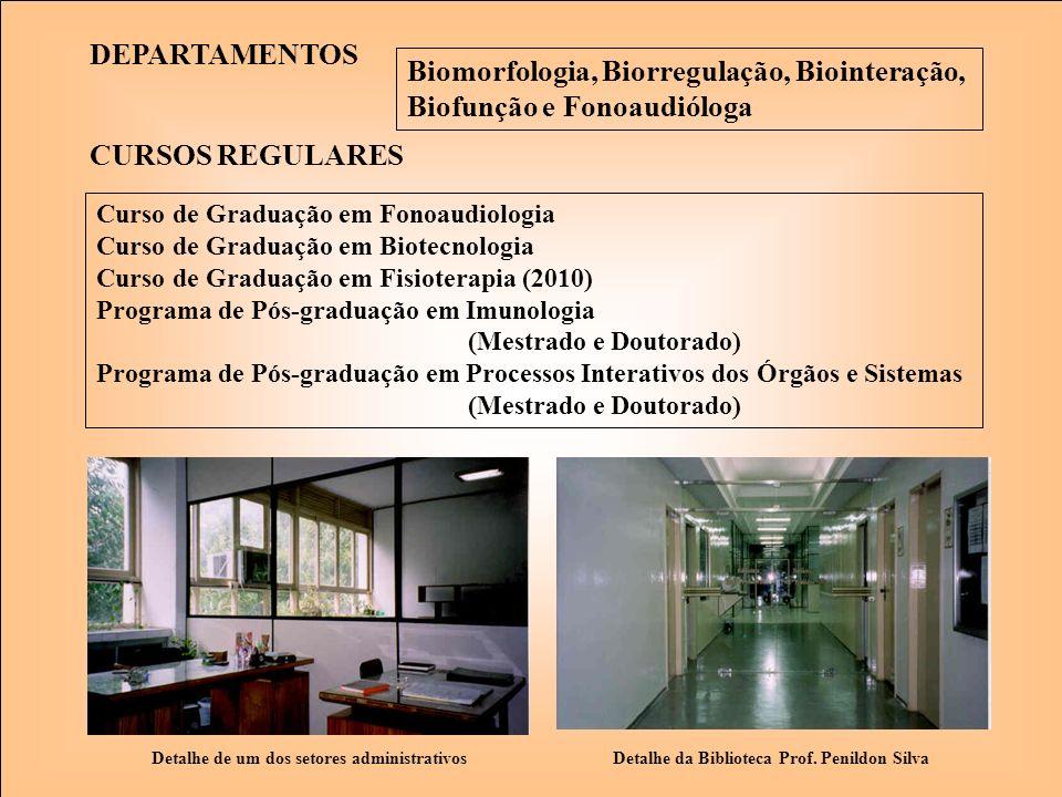 Biomorfologia, Biorregulação, Biointeração, Biofunção e Fonoaudióloga