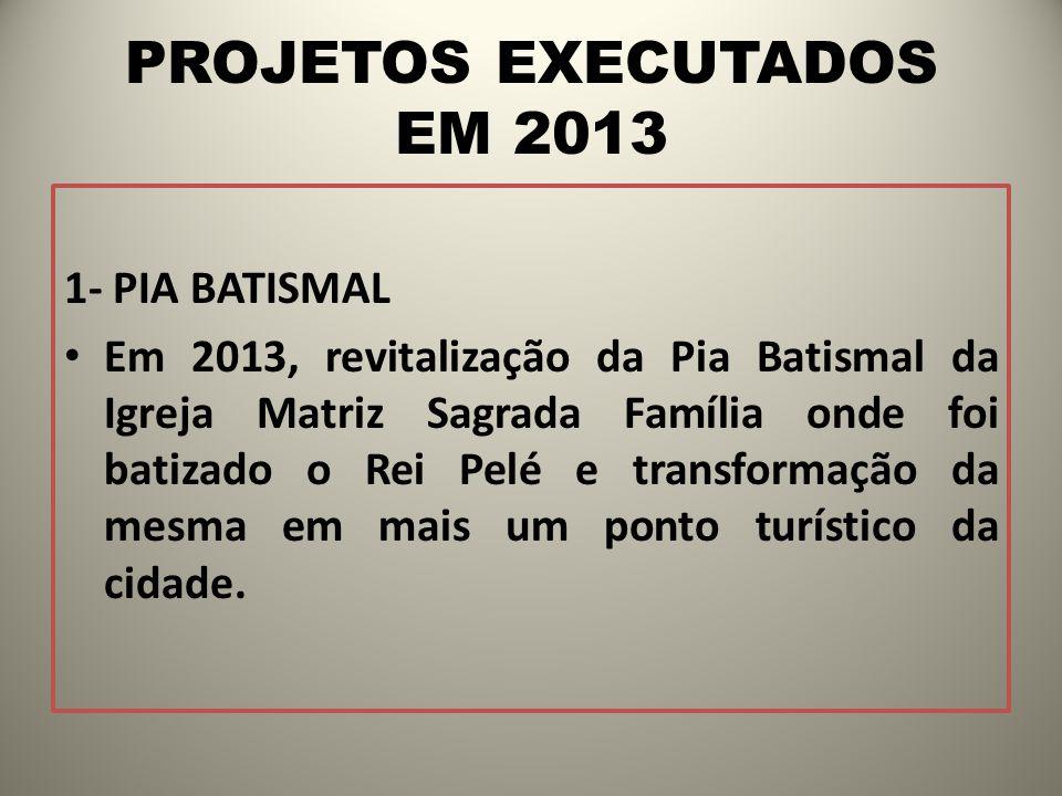 PROJETOS EXECUTADOS EM 2013