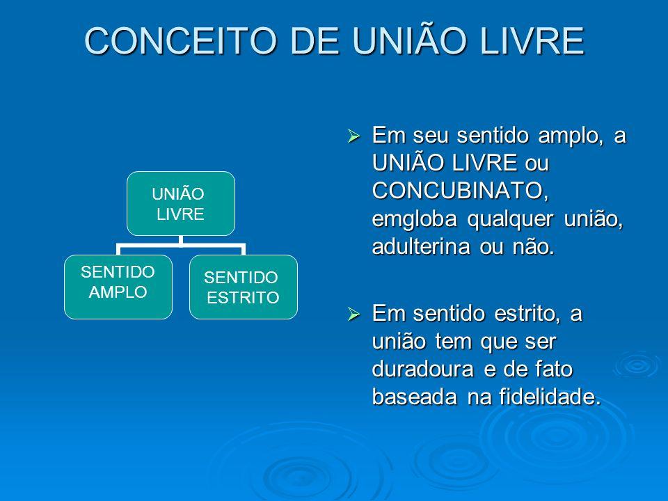 CONCEITO DE UNIÃO LIVRE