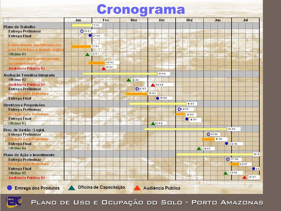 Cronograma Entrega dos Produtos Oficina de Capacitação