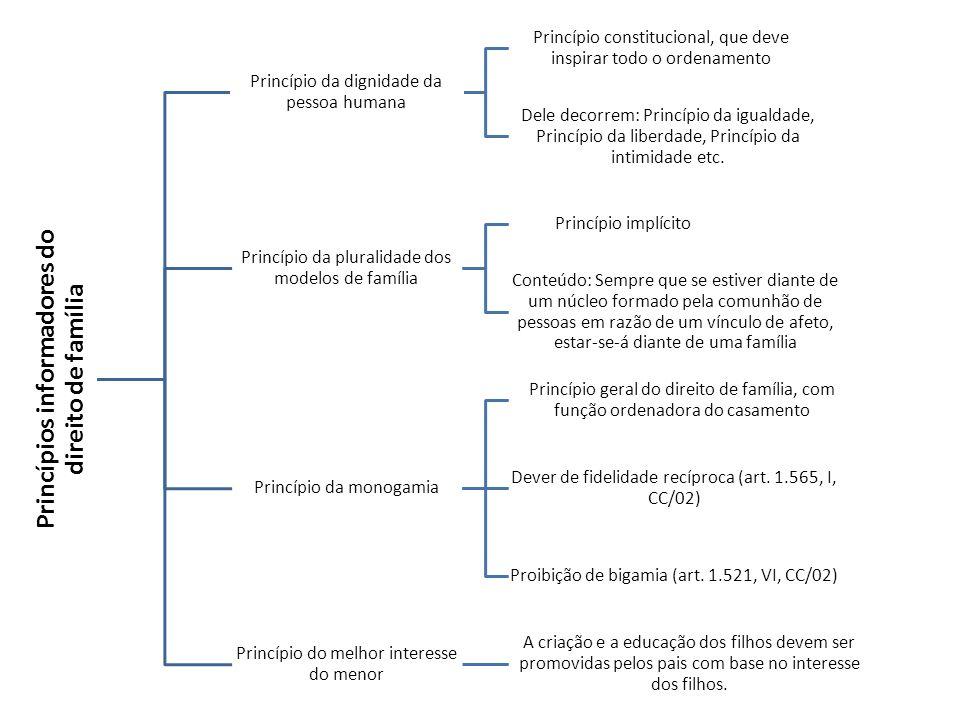 Princípios informadores do direito de família